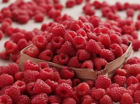 Natural Raspberry Ketones